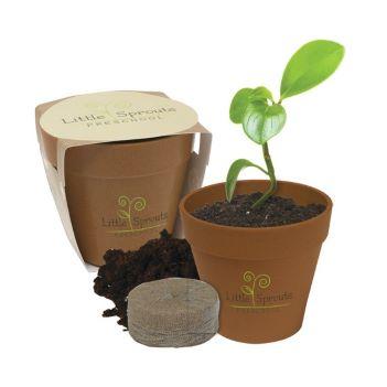 Mini Bamboo Blossom Kit - Kitchen & Home Items