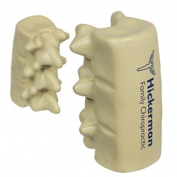 Spinal Segment Stress Toy