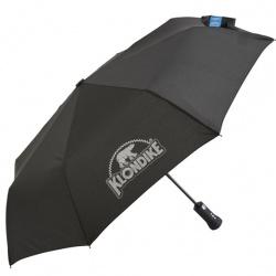 The Smart Umbrella
