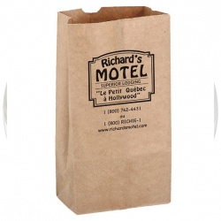 Recycled Kraft Paper Grocery Bag