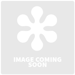 Rectangular Beveled Award with Chrome Base